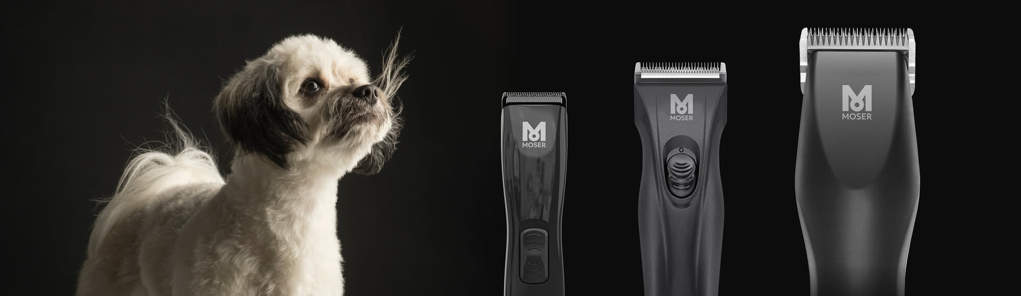 Click here for your Grooming Guide